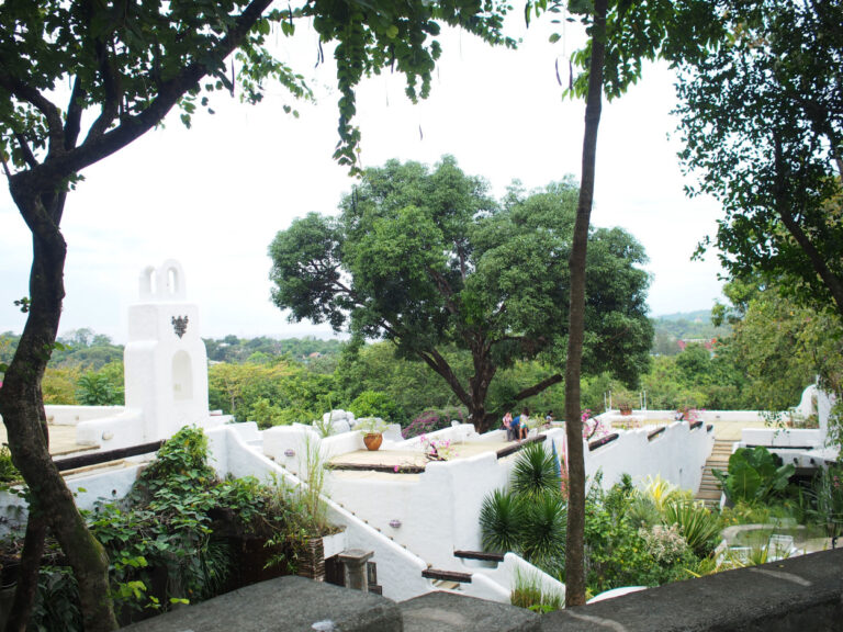 PINTO Roof View