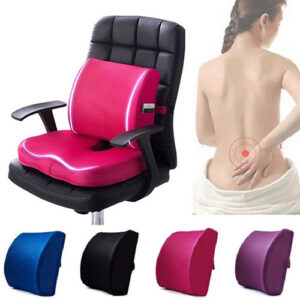 Back Support and Seat Cushion